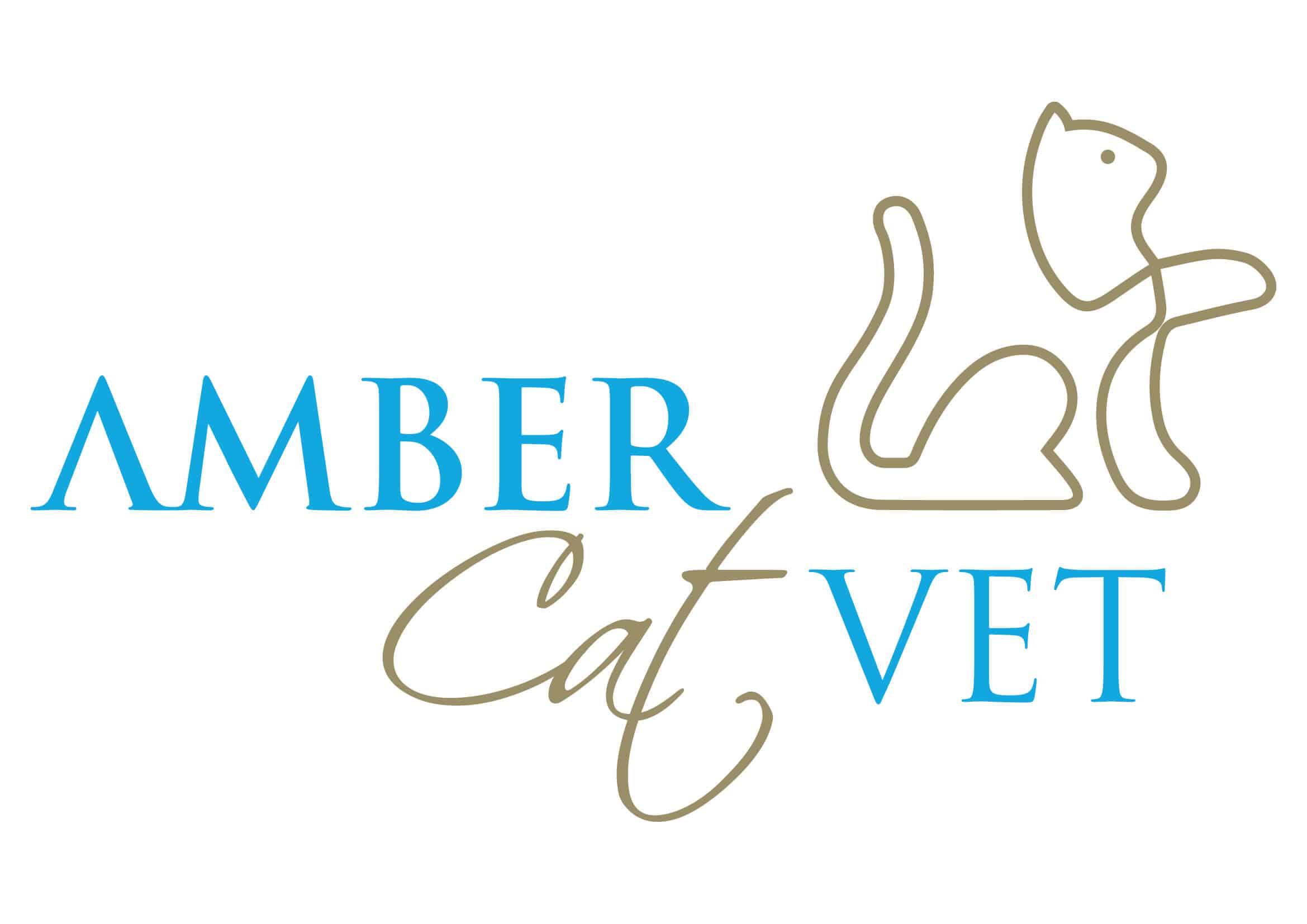 Cat Vet Singapore Cat clinic Singapore